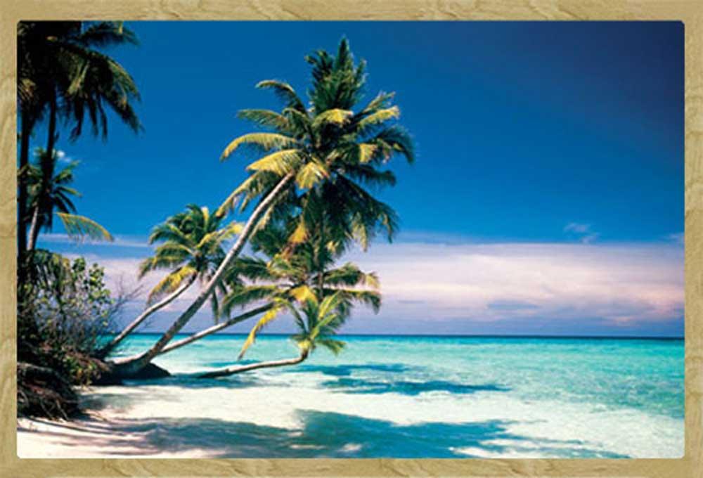 str nde beaches malediven palmen plakat poster rahmen mdf oder alu ebay. Black Bedroom Furniture Sets. Home Design Ideas