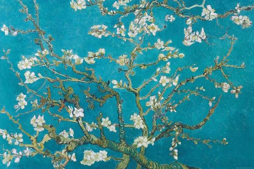 Van Gogh, Vincent - Almond Blossom San Remy 1890 - - + Rahmen ...
