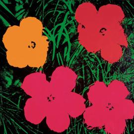 warhol andy blumen flowers c 1964 kunstdruck artprint gr e 60x60 cm ebay. Black Bedroom Furniture Sets. Home Design Ideas